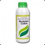 Brotolom-Cobre