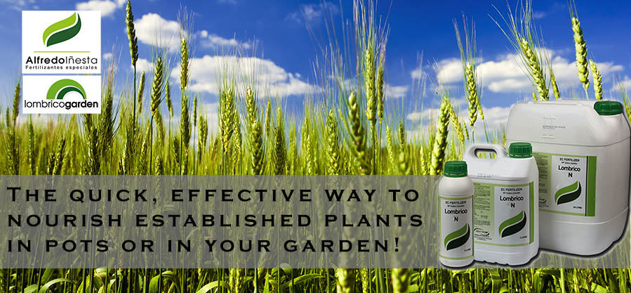 Authorized Distributor of Liquid Fertilizer - From Alfredo Inesta, Espain